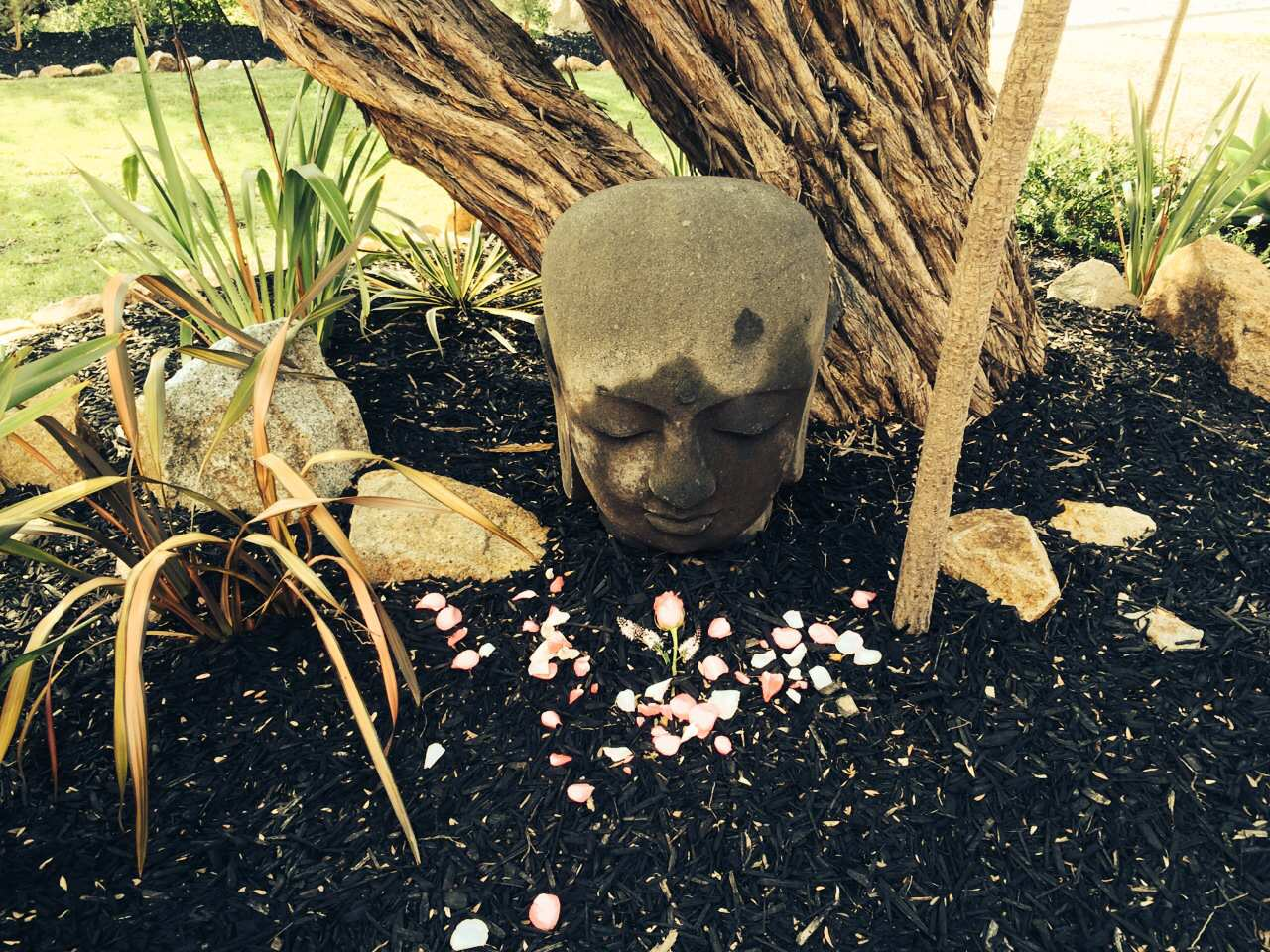 Buddha head from Nepal outside of the house