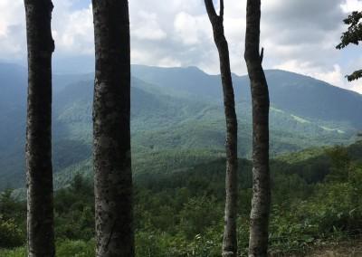 Iwatake views